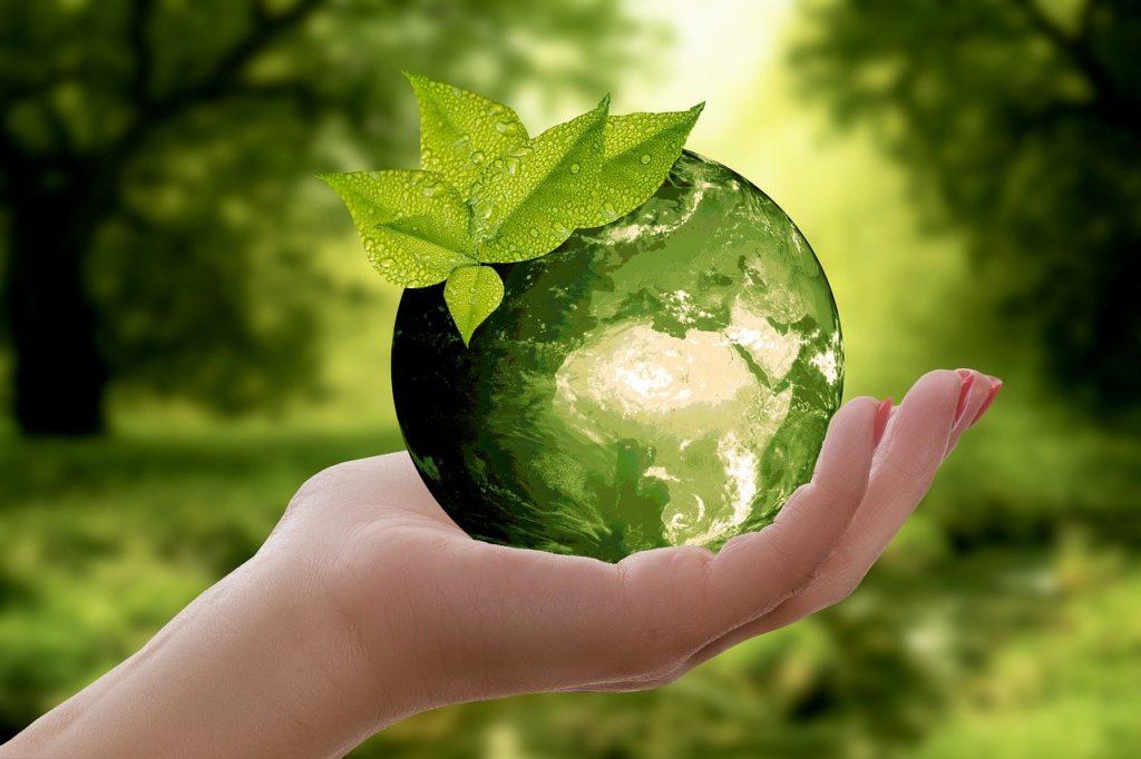 Stěhujte se ekologicky